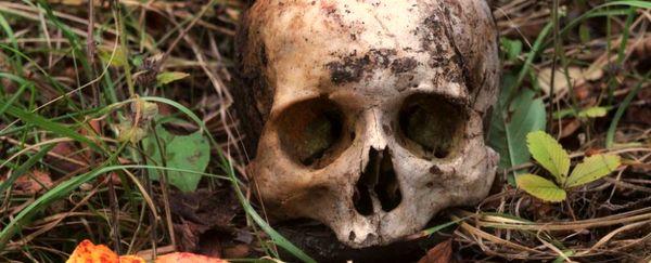 کشف قدیمیترین اسکلتهای انسانی قاره آمریکا