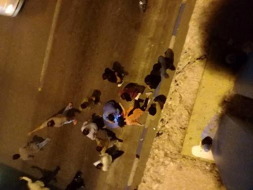 جزئیات خودکشی دختر 15 ساله از بالای پل زیرگذر+عکس