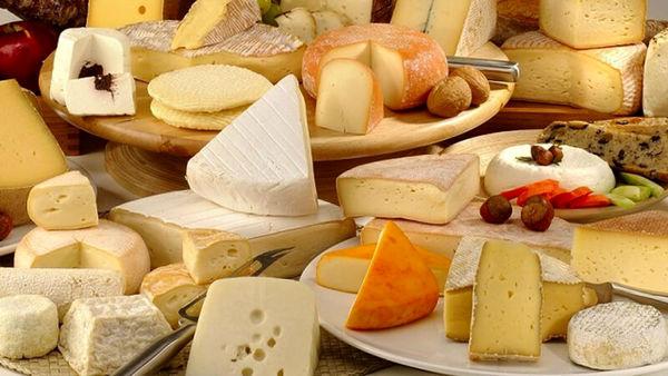 آیا پنیر سیستم ایمنی را تقویت می کند؟