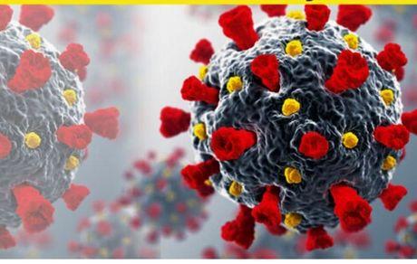 کشف توالی ژنوم کووید-۱۹ به گفته محققان ترکیه