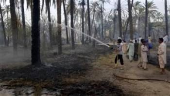 دویست نفر در آتش سوزی بخش دامن ایرانشهر سوختند