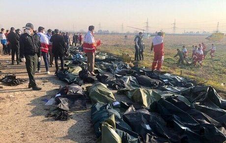 اظهارات مقام دولتی که ۲ فرزندش را در سقوط هواپیما از دست داد