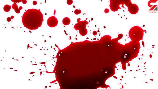 قتل عام خانوادگی به خاطر ارثیه / قتل مادر و 2 برادر