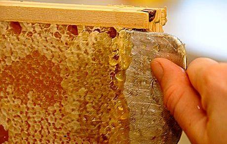 قیمت یک کیلو عسل زیر 70 هزار تومان، طبیعی نیست!