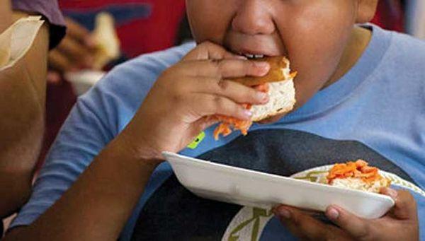 تاثیر چاقی بر رشد مغزی کودکان