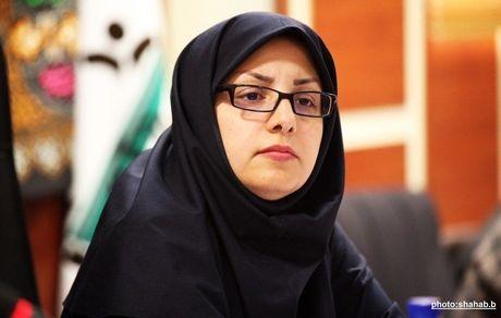 شوراهای شهر از مهم ترین نهادهای مردم سالاری و اداره کشور توسط مردم محسوب می شوند