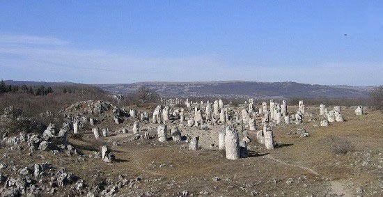 جنگلی از جنس سنگ در کشور بلغارستان
