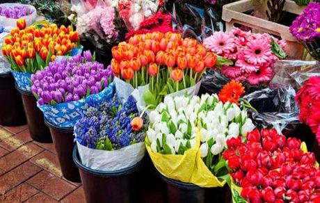 قیمت نجومی انواع گل برای روز مادر