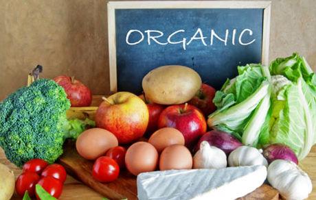 محصولات ارگانیک چیست؟