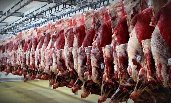 گوشت تا پایان سال گران نمیشود