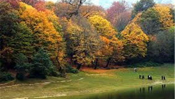 تکرار داستان سریال افرا در پارک ملی گلستان