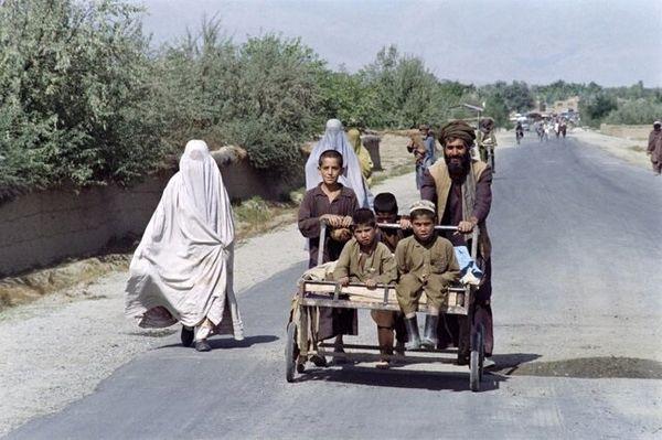 طالبان زن را ماشین جوجه کشی میبیند!